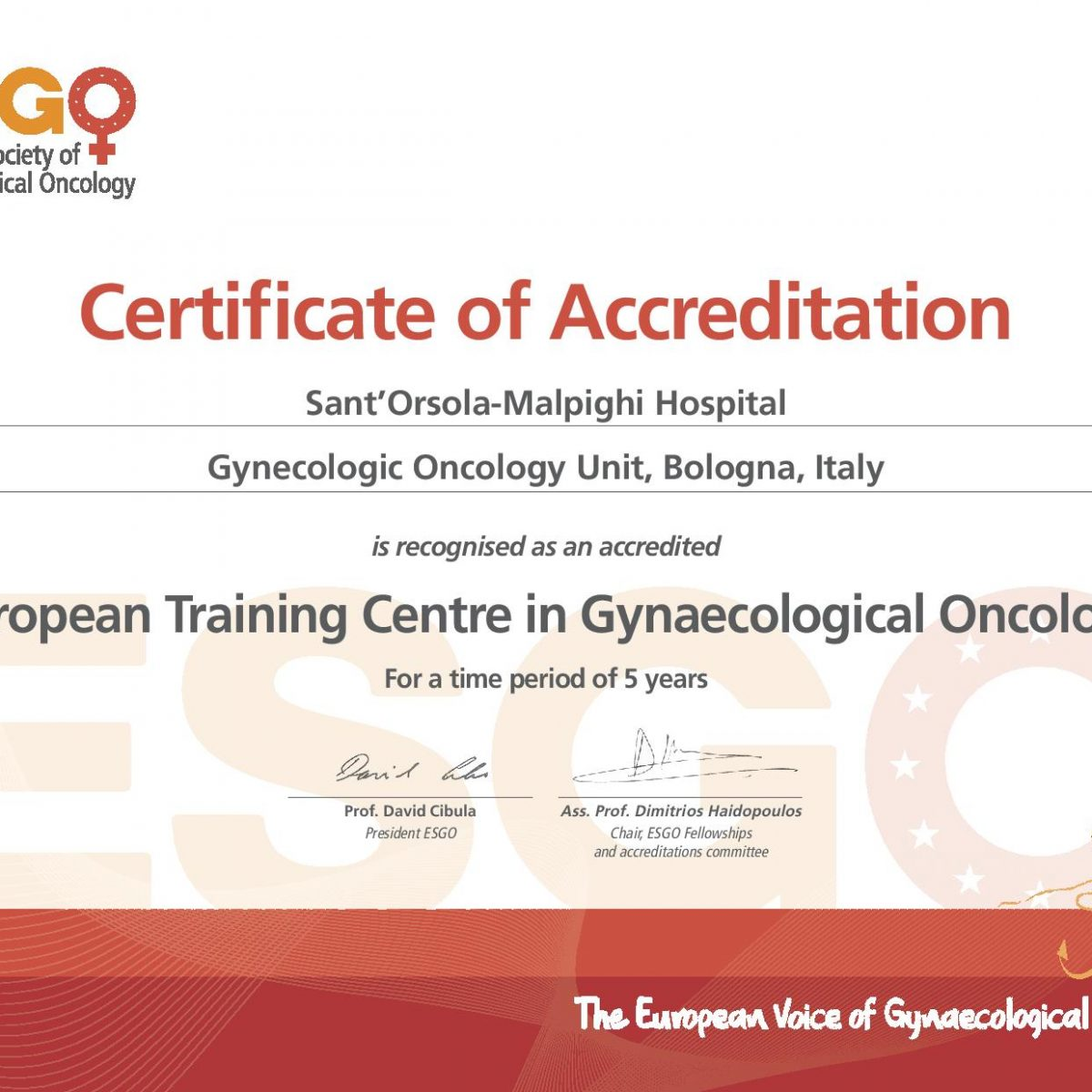 ESGO Bologna Certificate gyn onc-page-001
