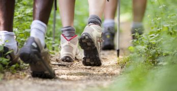 shoes of people trekking and walking in row
